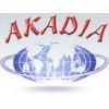 Автозапчасти в интернет-магазине Акадиа